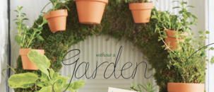 Herb Planting Ideas
