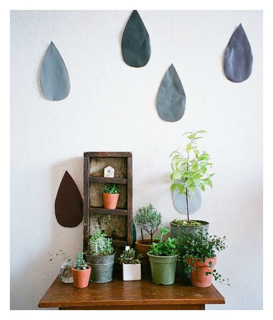 Plants_11
