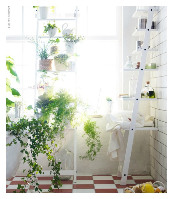 Plants_12