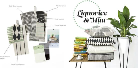 DIGGI DOT colourboard_Liquorice & Mint
