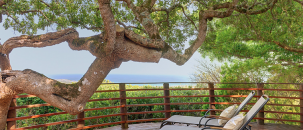 The Grootbos Month of Love Special