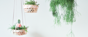 How to Make a Hanging Planter